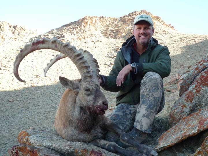 Brogan-ibex-crop