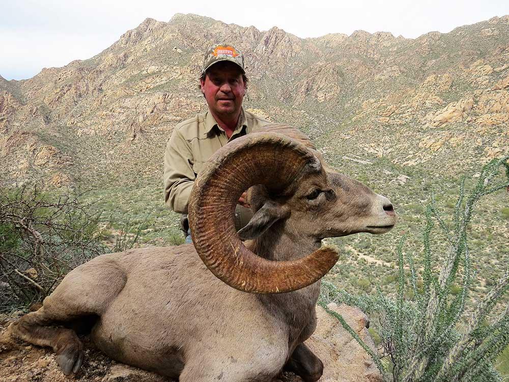 Cannady,-Cody-Desert-Sheep0217