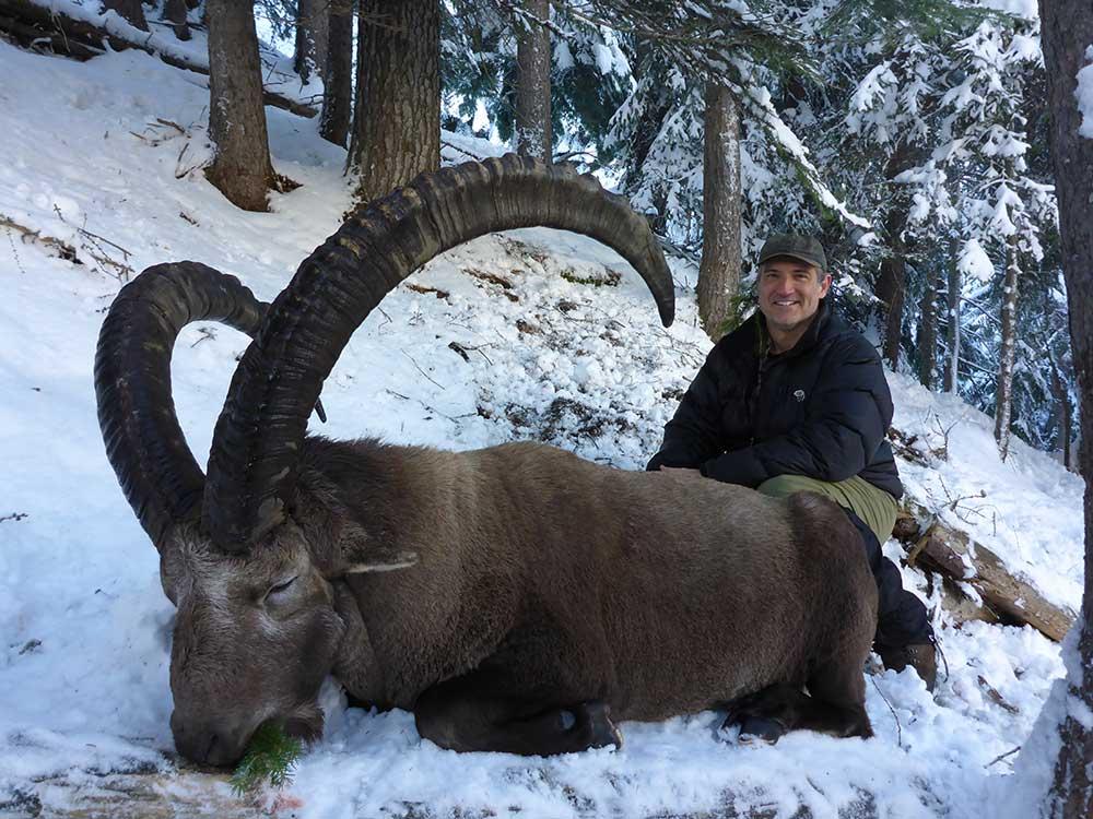 H.McNatt_Alpine-ibex3